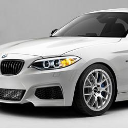 BMW F22 2 SERIES